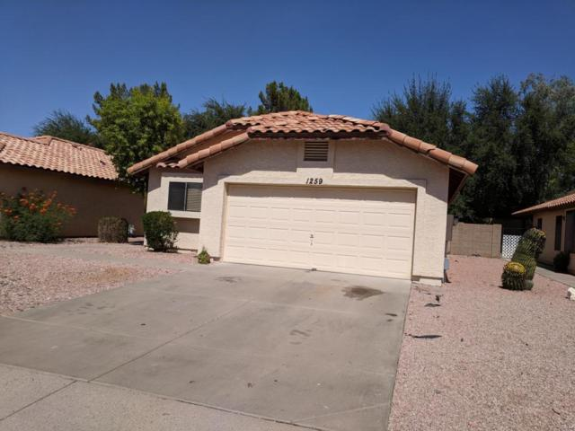 1259 S Quinn, Mesa, AZ 85206 (MLS #5793755) :: The Everest Team at My Home Group