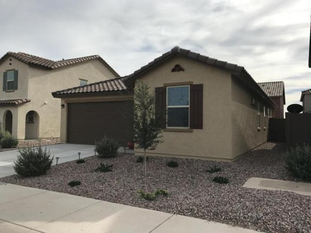 12033 W Cottontail Lane, Peoria, AZ 85383 (MLS #5793759) :: The Everest Team at My Home Group