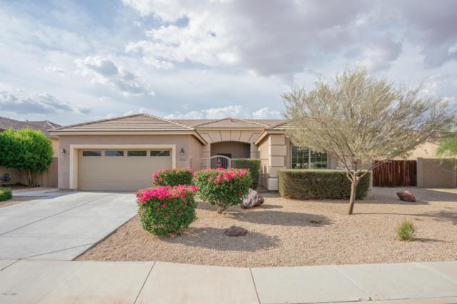 18508 W Oregon Avenue, Litchfield Park, AZ 85340 (MLS #5793761) :: Kortright Group - West USA Realty