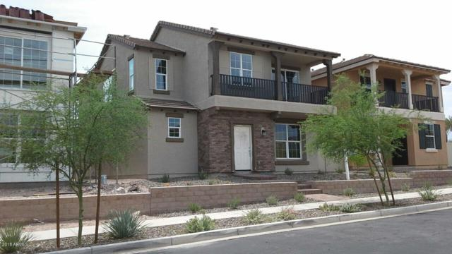 29277 N 123RD Glen, Peoria, AZ 85383 (MLS #5793762) :: The Worth Group