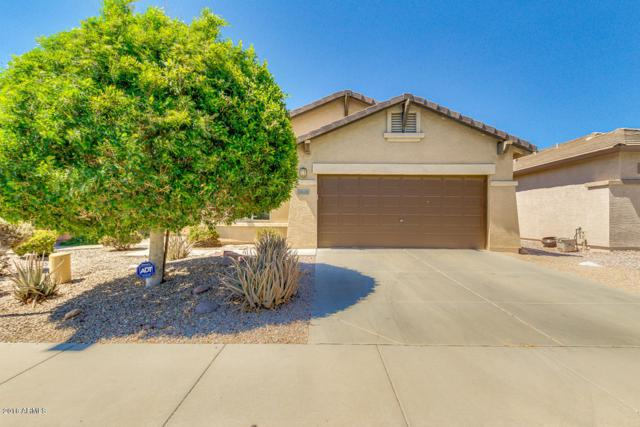 9136 E Auburn Street, Mesa, AZ 85207 (MLS #5793771) :: The Everest Team at My Home Group