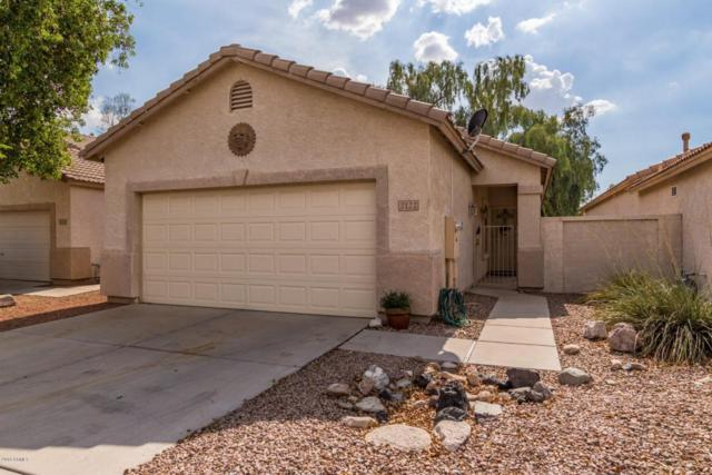 2122 N Garrett Drive, Chandler, AZ 85225 (MLS #5793788) :: Revelation Real Estate