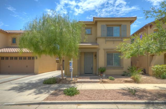 19181 E Swan Drive, Queen Creek, AZ 85142 (MLS #5793817) :: The Everest Team at My Home Group