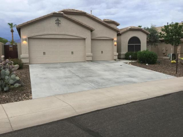 867 S Del Rio Court, Apache Junction, AZ 85120 (MLS #5793831) :: The Rubio Team