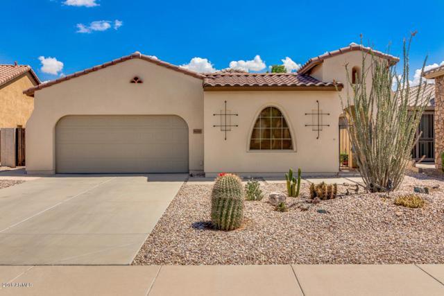 36085 W Catalan Street, Maricopa, AZ 85138 (MLS #5793833) :: Keller Williams Legacy One Realty