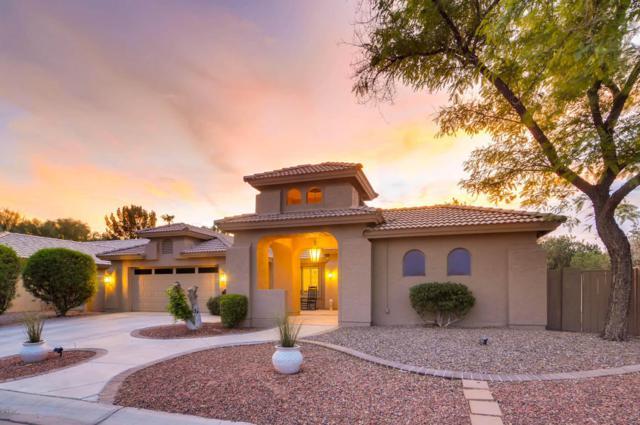23920 S Glenburn Drive, Sun Lakes, AZ 85248 (MLS #5793856) :: REMAX Professionals