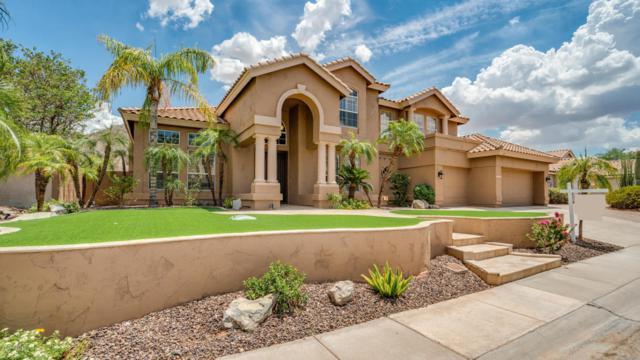 1641 E Silverwood Drive, Phoenix, AZ 85048 (MLS #5793871) :: Conway Real Estate