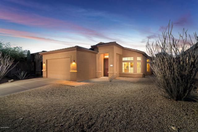 4300 S Pony Rider Trail, Gold Canyon, AZ 85118 (MLS #5793872) :: Team Wilson Real Estate
