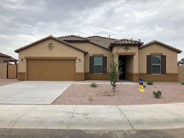 9235 W Denton Lane, Glendale, AZ 85305 (MLS #5793890) :: REMAX Professionals