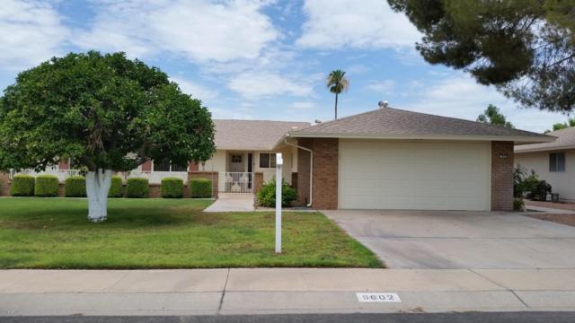 9602 W Long Hills Drive, Sun City, AZ 85351 (MLS #5793908) :: The Rubio Team