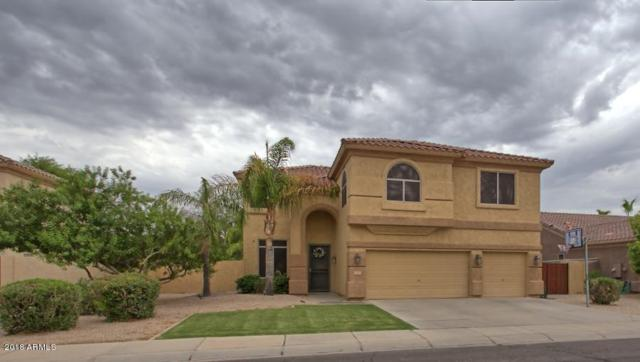 1381 S Central Drive, Chandler, AZ 85286 (MLS #5793910) :: The W Group