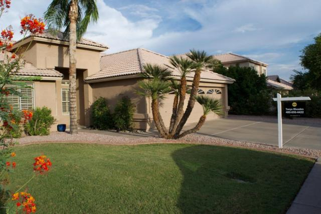 931 N Kenwood Lane, Chandler, AZ 85226 (MLS #5793915) :: Revelation Real Estate