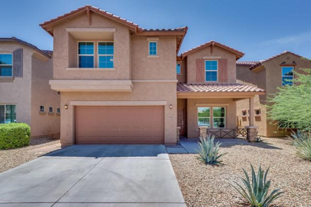 5719 W Milada Drive, Laveen, AZ 85339 (MLS #5793924) :: Conway Real Estate