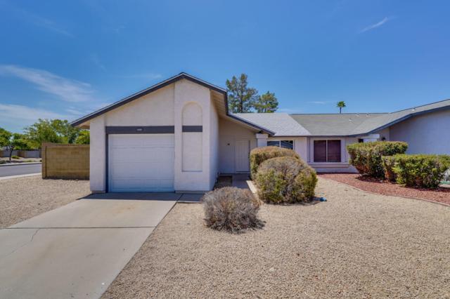 3001 W Rose Garden Lane, Phoenix, AZ 85027 (MLS #5793958) :: REMAX Professionals
