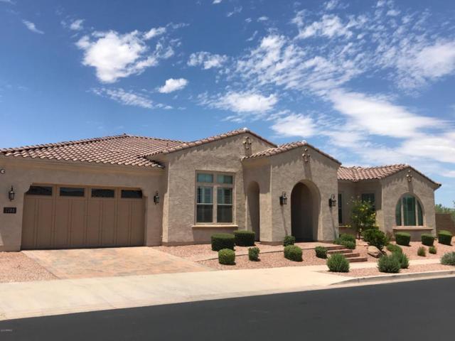 7704 S 29th Place, Phoenix, AZ 85042 (MLS #5793963) :: Revelation Real Estate