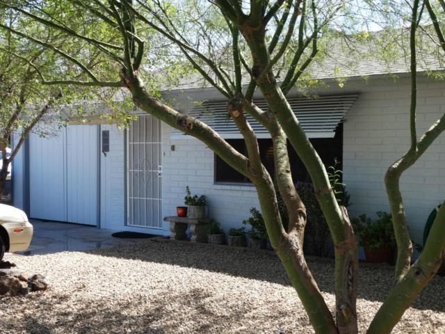 9213 N 11 Street, Phoenix, AZ 85020 (MLS #5793965) :: REMAX Professionals