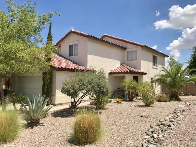 22399 W Desert Bloom Street, Buckeye, AZ 85326 (MLS #5793970) :: REMAX Professionals