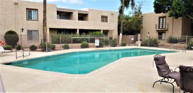 3313 N 68TH Street #207, Scottsdale, AZ 85251 (MLS #5793980) :: Phoenix Property Group
