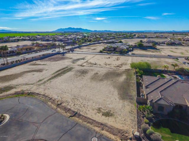 18123 W Palo Verde Court, Litchfield Park, AZ 85340 (MLS #5793983) :: REMAX Professionals