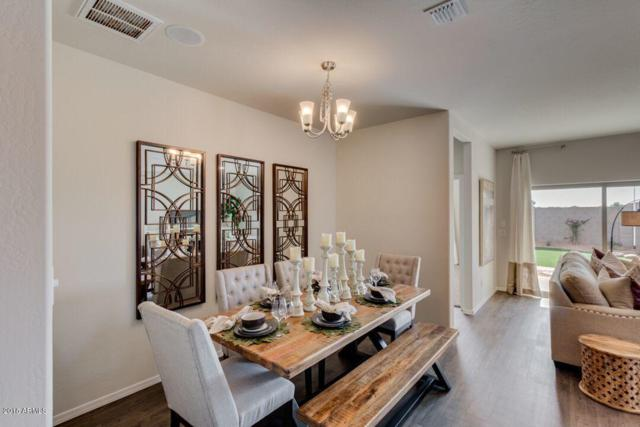 30224 W Earll Drive, Buckeye, AZ 85396 (MLS #5793991) :: Kortright Group - West USA Realty