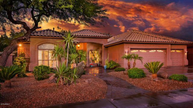 895 W Beechnut Drive, Chandler, AZ 85248 (MLS #5793994) :: Santizo Realty Group