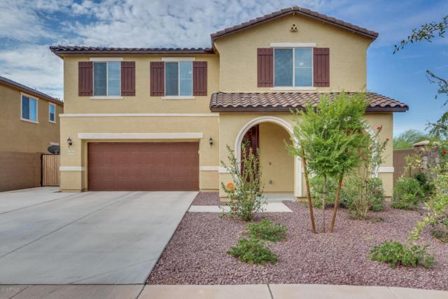 15765 W Desert Hills Drive, Surprise, AZ 85379 (MLS #5794011) :: Kortright Group - West USA Realty