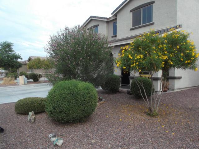 1765 W Gold Mine Way, Queen Creek, AZ 85142 (MLS #5794016) :: Santizo Realty Group