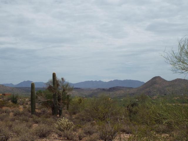 16785 W Rio Escondido Place, Wickenburg, AZ 85390 (MLS #5794022) :: Brett Tanner Home Selling Team