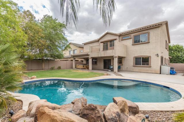 4429 E Del Rio Drive, San Tan Valley, AZ 85140 (MLS #5794036) :: Arizona 1 Real Estate Team