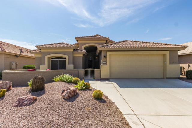 3721 N 150TH Court, Goodyear, AZ 85395 (MLS #5794167) :: The Sweet Group