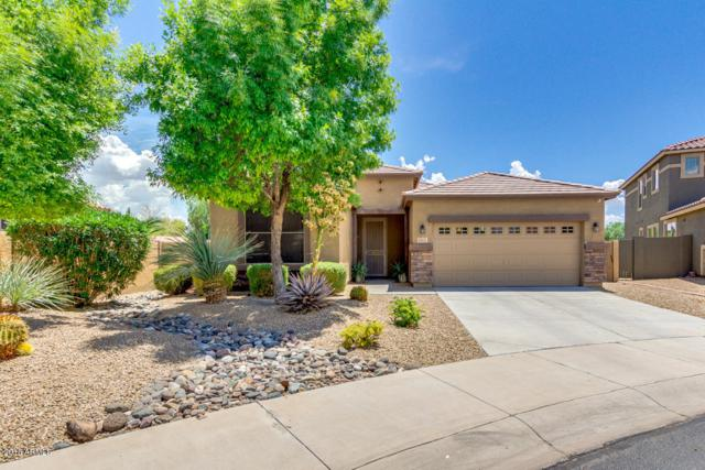 15473 W Glenrosa Avenue, Goodyear, AZ 85395 (MLS #5794175) :: Santizo Realty Group