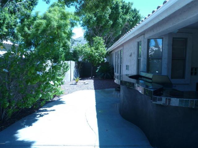 720 E Goldenrod Street, Phoenix, AZ 85048 (MLS #5794197) :: Keller Williams Legacy One Realty