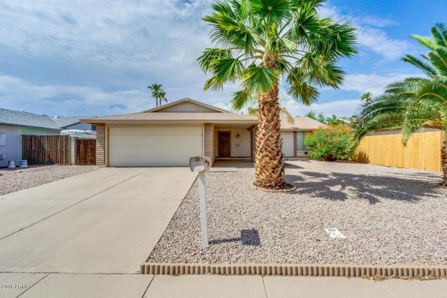 1608 W Nopal Drive, Chandler, AZ 85224 (MLS #5794219) :: Santizo Realty Group