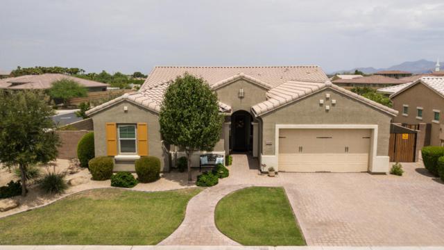 3046 N Winthrop, Mesa, AZ 85213 (MLS #5794258) :: Kortright Group - West USA Realty