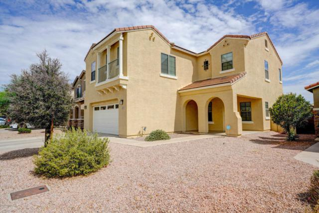 4335 E Velasco Street, San Tan Valley, AZ 85140 (MLS #5794266) :: Arizona 1 Real Estate Team