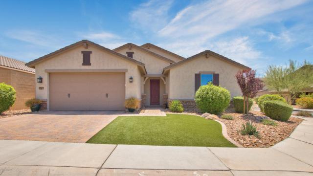 33907 N 29TH Drive, Phoenix, AZ 85085 (MLS #5794269) :: Santizo Realty Group