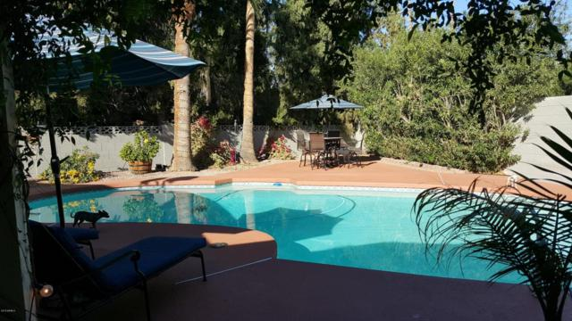 3225 N 86TH Street, Scottsdale, AZ 85251 (MLS #5794275) :: Kortright Group - West USA Realty