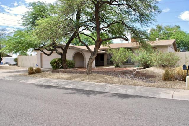3101 W Mcrae Way, Phoenix, AZ 85027 (MLS #5794280) :: Santizo Realty Group