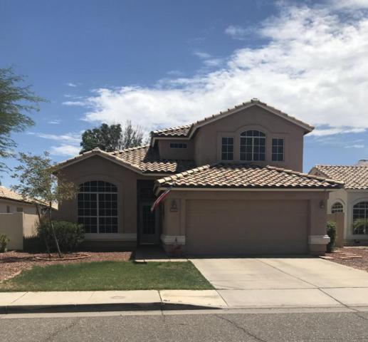 6919 W Tina Lane, Glendale, AZ 85310 (MLS #5794282) :: Santizo Realty Group
