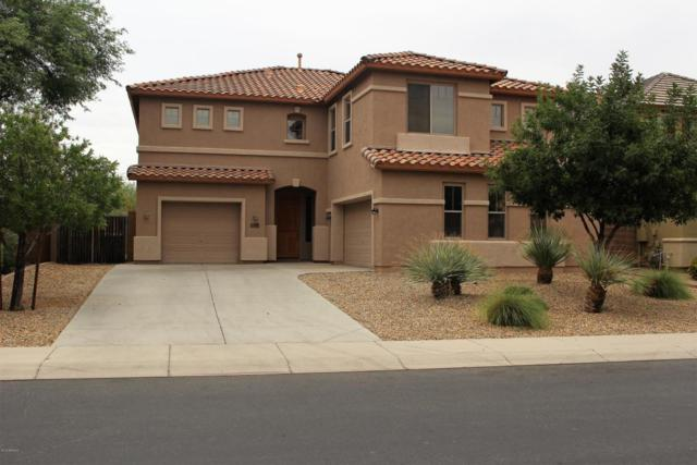 29855 N 71ST Drive, Peoria, AZ 85383 (MLS #5794304) :: The Laughton Team