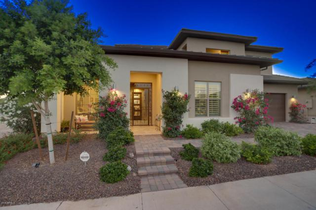 29870 N 132ND Drive, Peoria, AZ 85383 (MLS #5794335) :: The Worth Group