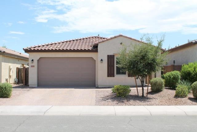 12255 W Prickly Pear Trail, Peoria, AZ 85383 (MLS #5794349) :: The AZ Performance Realty Team