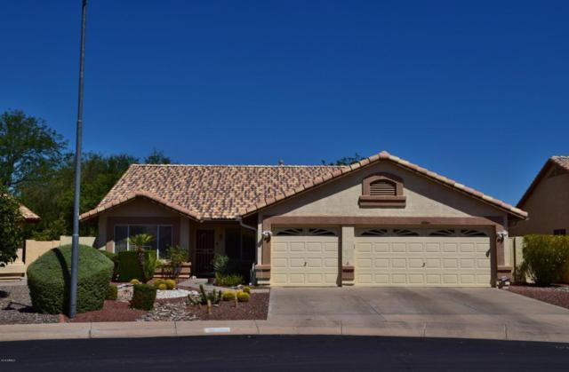 20364 N 108TH Lane, Sun City, AZ 85373 (MLS #5794356) :: Desert Home Premier