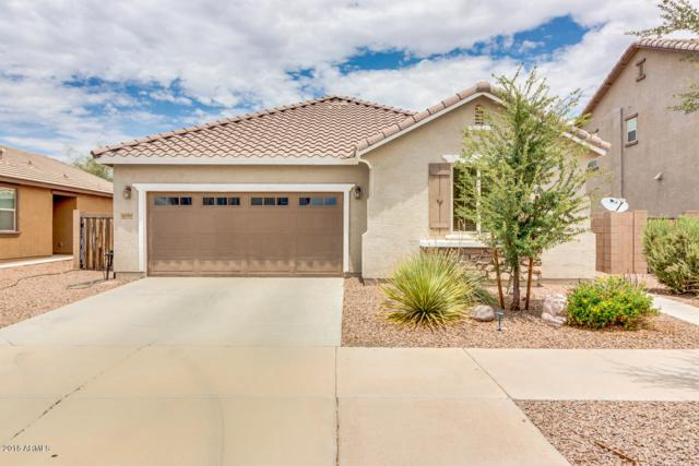21140 E Cherrywood Drive, Queen Creek, AZ 85142 (MLS #5794360) :: Arizona 1 Real Estate Team