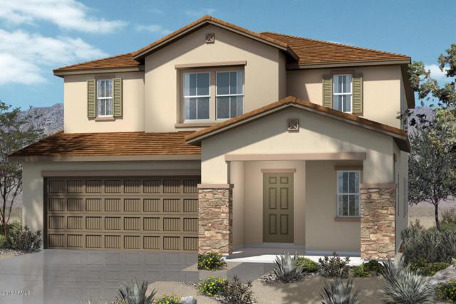 40859 W Portis Drive, Maricopa, AZ 85138 (MLS #5794391) :: Arizona 1 Real Estate Team