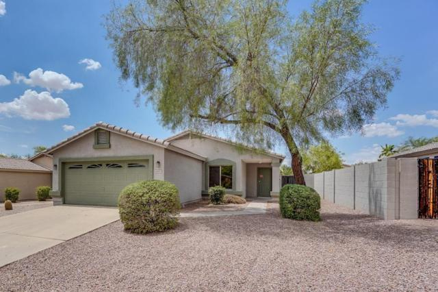 6920 S Russet Sky Way, Gold Canyon, AZ 85118 (MLS #5794397) :: The Bill and Cindy Flowers Team