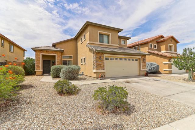 25519 W Crown King Road, Buckeye, AZ 85326 (MLS #5794401) :: Occasio Realty