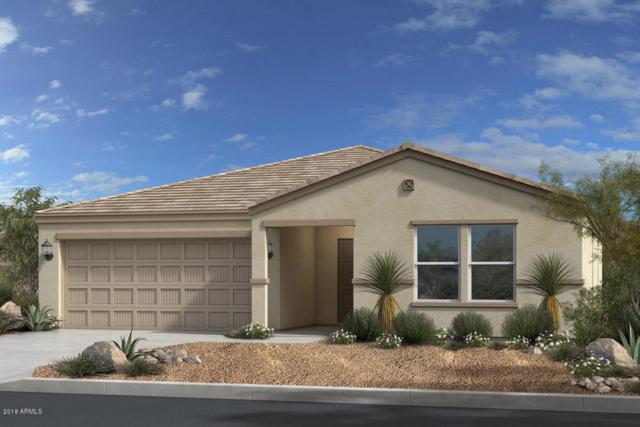 1737 E Grenadine Road, Phoenix, AZ 85040 (MLS #5794412) :: The Rubio Team