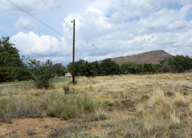 17563 W Foothill Road, Yarnell, AZ 85362 (MLS #5794418) :: Yost Realty Group at RE/MAX Casa Grande