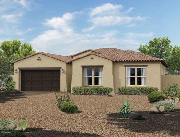 14401 W Corrine Drive, Surprise, AZ 85379 (MLS #5794426) :: Phoenix Property Group